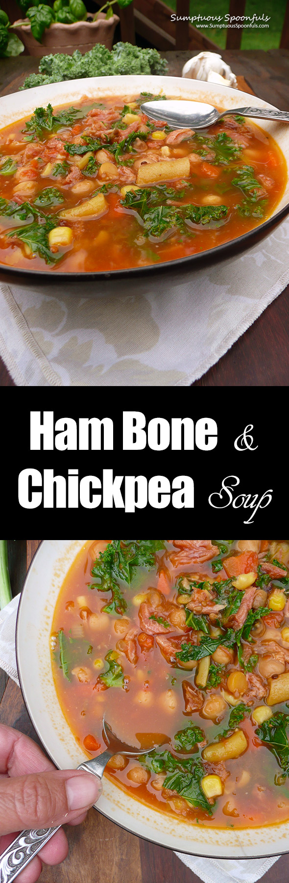 Ham Bone & Chickpea Soup ~Sumptuous Spoonfuls #homemade #ham #bean #soup #recipe